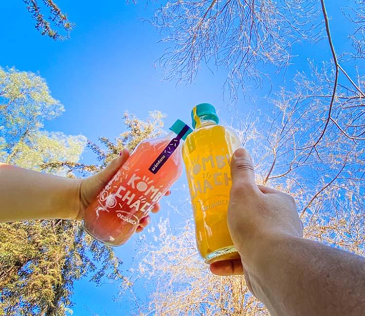 Kombuchacha botella 500 ml